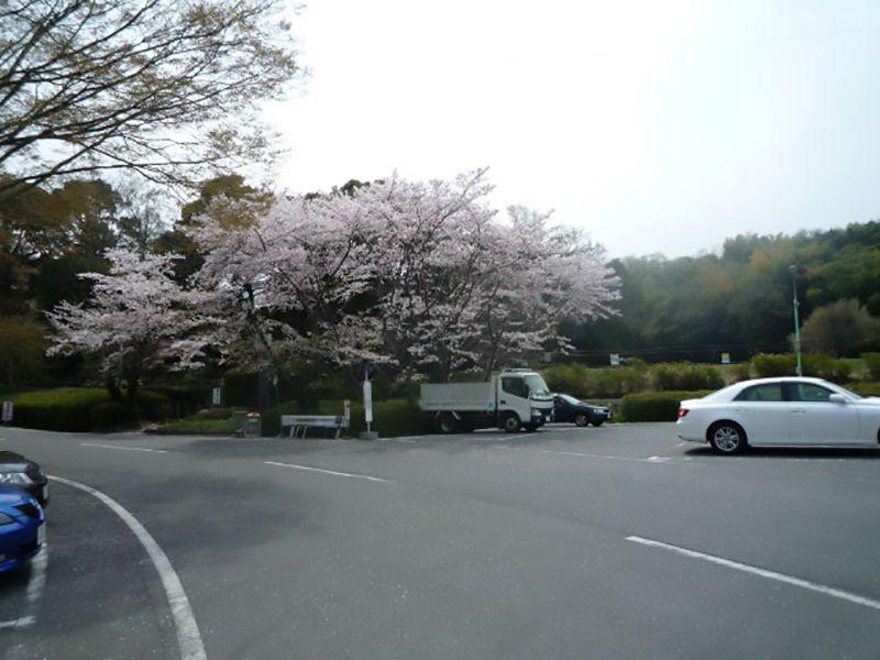 パークフォレスト鉢ヶ峯 駐車スペース