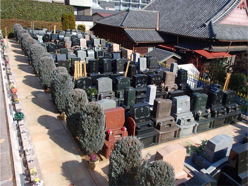 聖和苑 きれいに区画整理された墓域