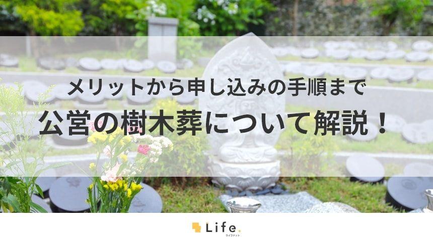 【樹木葬 公営】アイキャッチ画像
