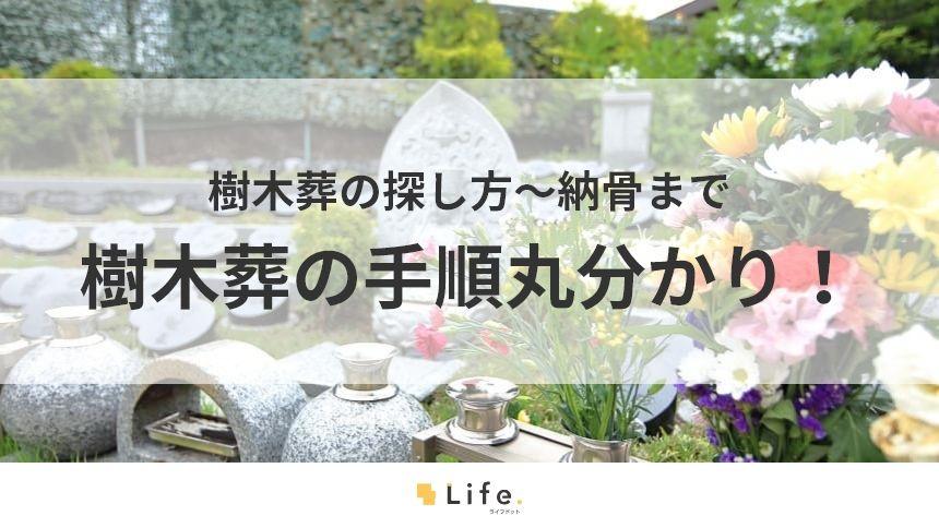 【樹木葬 手順】アイキャッチ画像