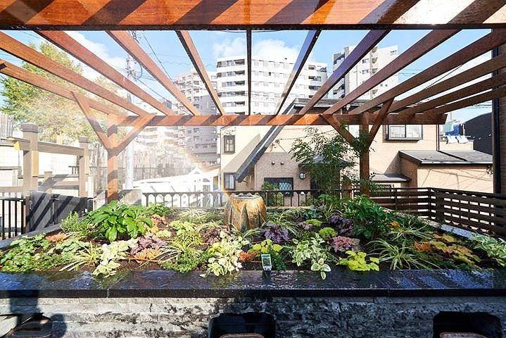 恵光メモリアル 新宿浄苑 ペットと眠る樹木葬テッセ 緑と花と虹「テッセラ」