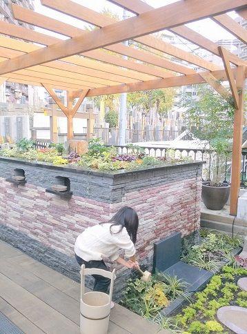 恵光メモリアル 新宿浄苑 ペットと眠る樹木葬テッセ 「テッセラ」お参り風景