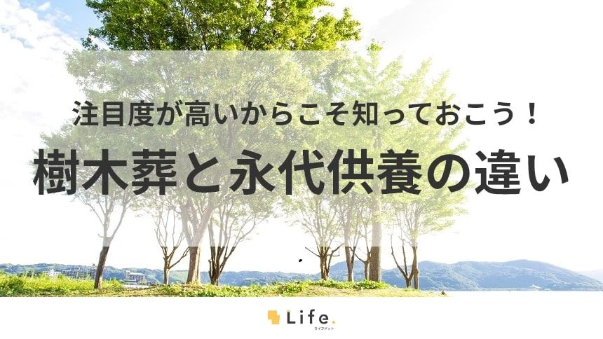 【樹木葬 永代供養】アイキャッチ