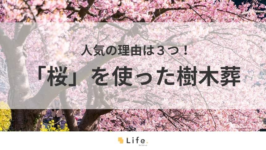 【樹木葬 桜】アイキャッチ