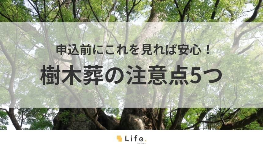 【樹木葬 注意点】アイキャッチ