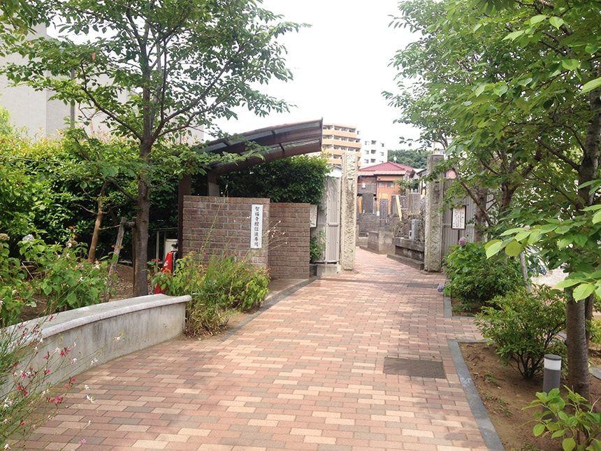 上石神井霊園7