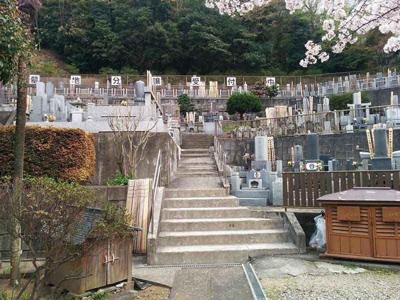 般若院 斜面に建立された墓石