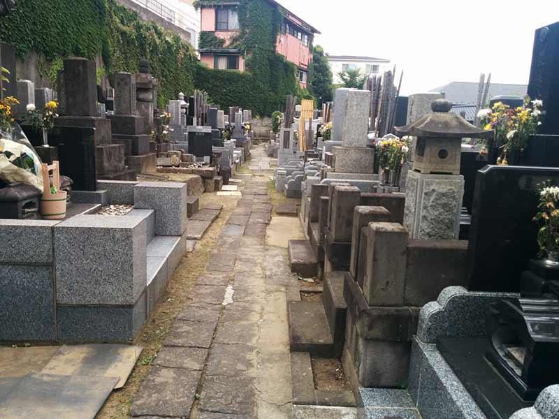 宗興寺 花が添えられた墓域