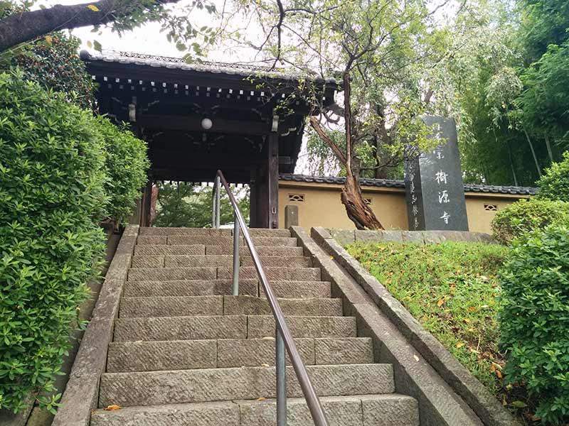 妙秀山 樹源寺 山門へと続く階段