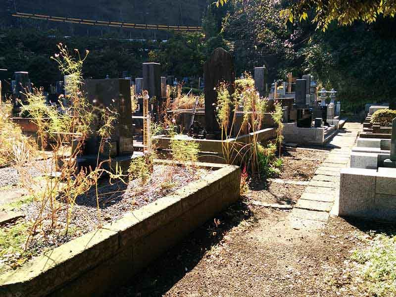 飯盛山仁王院 鎖大師青蓮寺 緑に囲まれた墓域