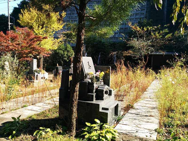 飯盛山仁王院 鎖大師青蓮寺 日当たりの良い墓域