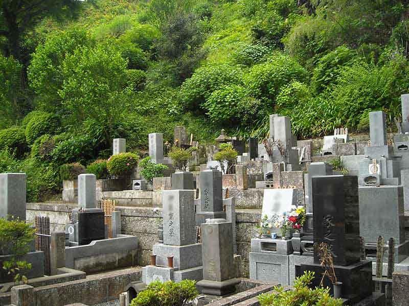 龍峰院 ひな壇状の墓域