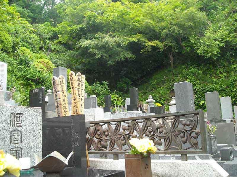 龍峰院 緑が美しい墓域