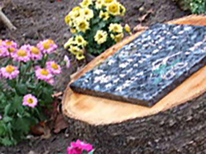 千の風 みらい園 樹木葬「希望」