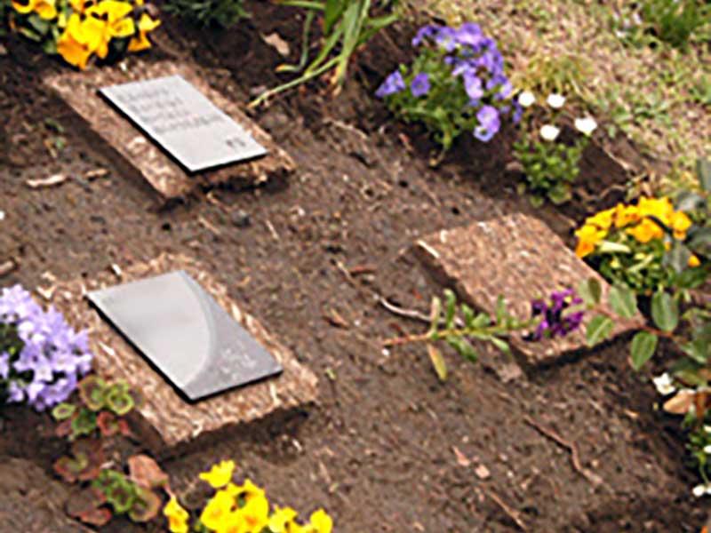 千の風 みらい園 個人葬「千の花」