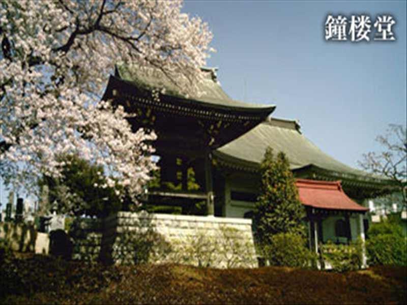 永昌寺 桜がきれいな鐘楼堂