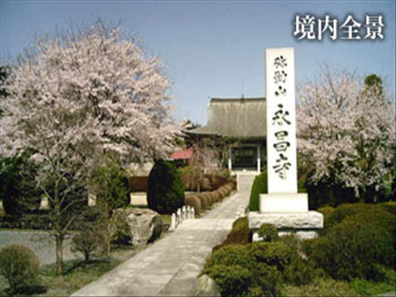 永昌寺 桜の咲く境内