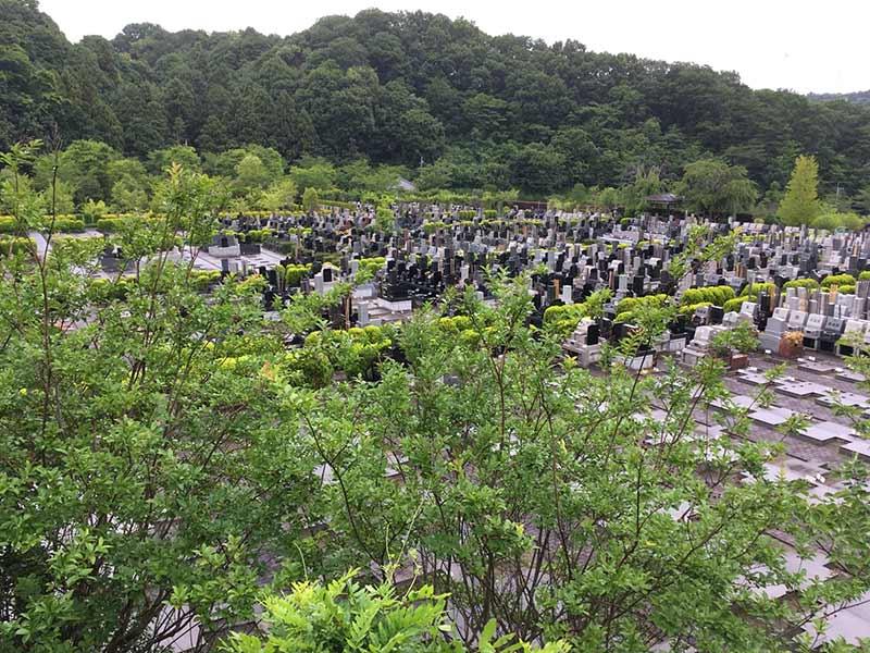 合掌の郷 町田小野路霊園 緑豊かな園内風景②