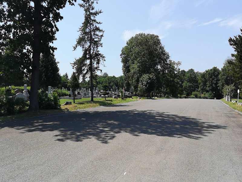 帯広市緑ケ丘墓地 木々に囲まれた墓地
