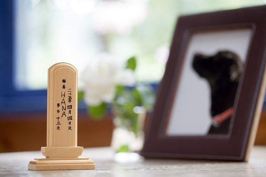 ペットの遺影と位牌