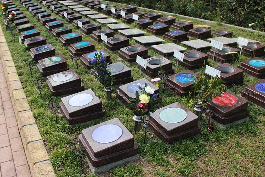阪南小川渓メモリーズパーク「樹木葬」桜泪葬(おうるいそう)