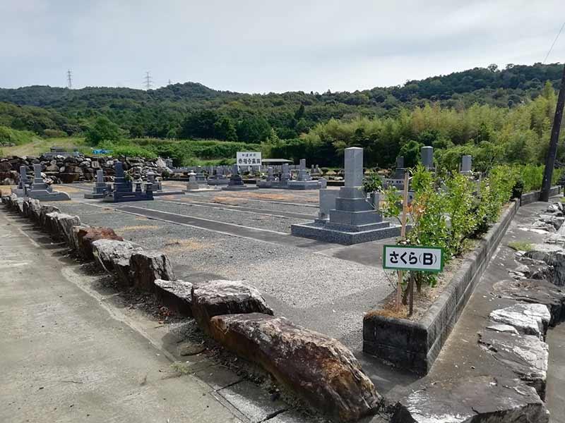 吉祥山緑地墓苑のさくら(B)