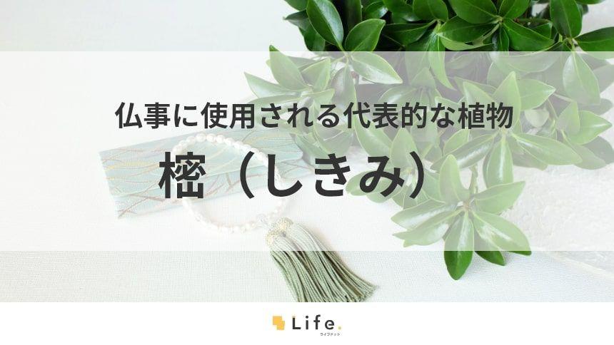 【樒】アイキャッチ