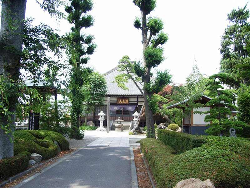 高雲寺 木々が美しい本堂