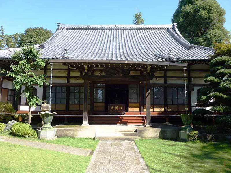 妙蓮寺 植栽に囲まれた本堂