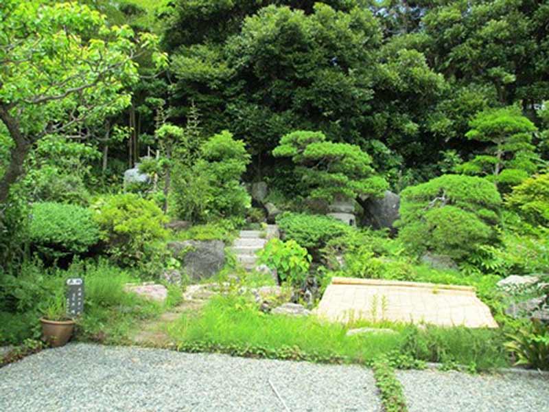 浄楽寺 豊かな自然