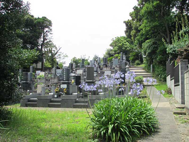 浄楽寺 広々とした墓域