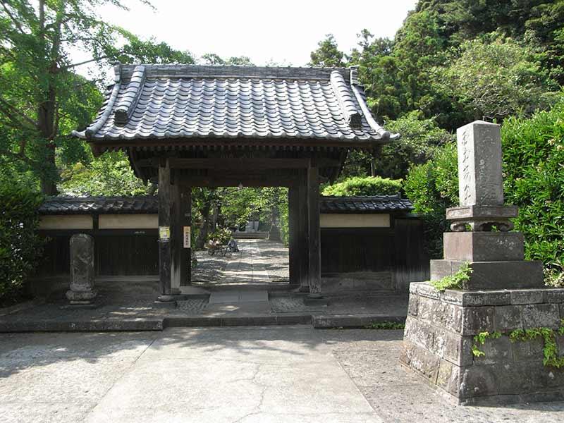 妙光寺 緑に囲まれた山門