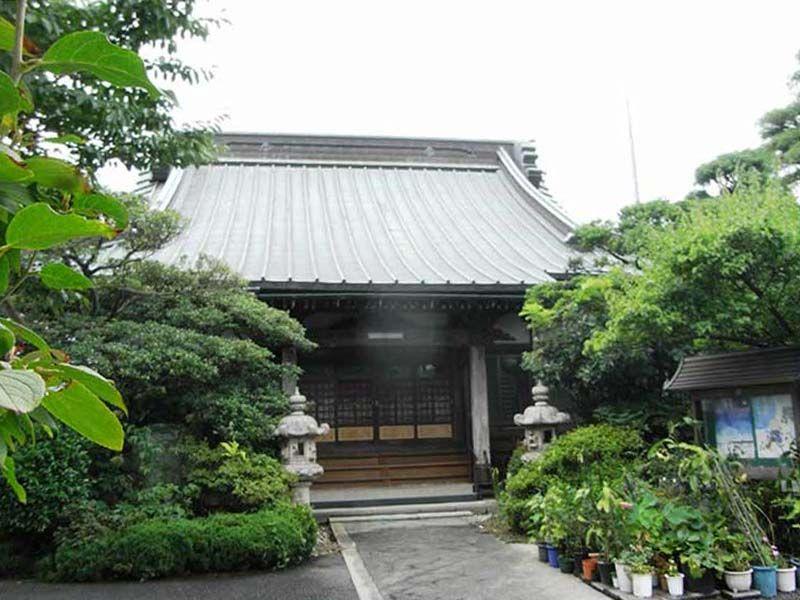 圓宗寺 植栽が鮮やかな本堂