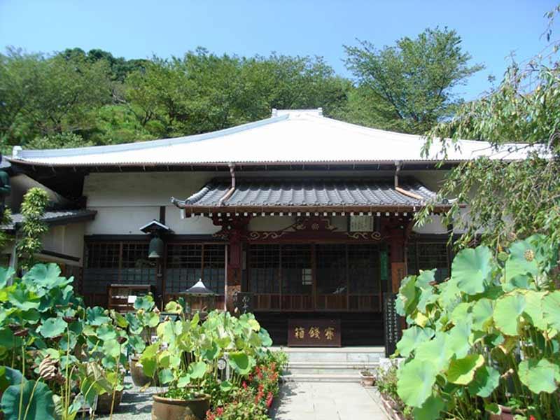 妙音寺 緑に囲まれた本堂