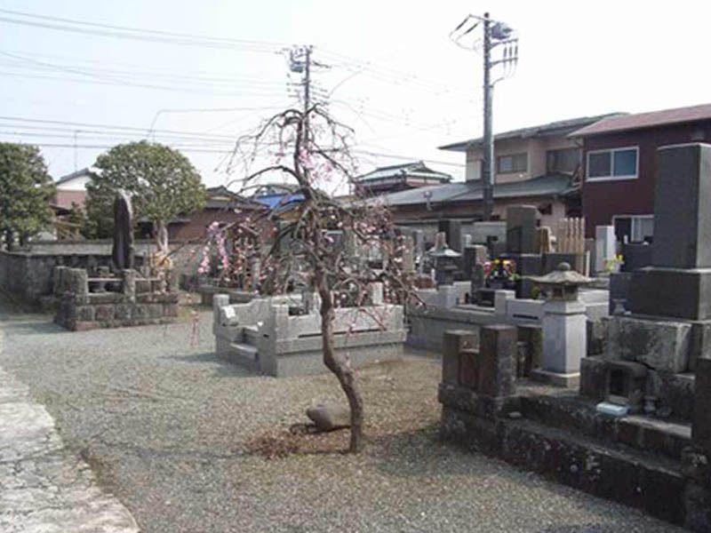 大経寺 広々とした墓域
