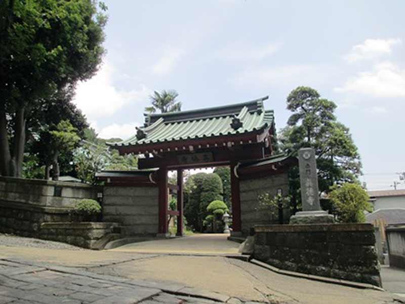 真徳寺 緑が豊かな山門