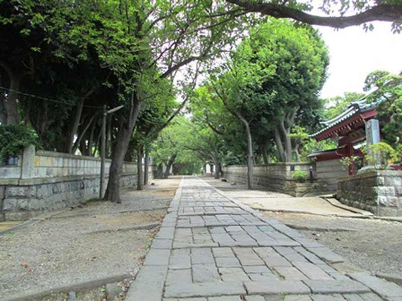真徳寺 植栽が美しい参道