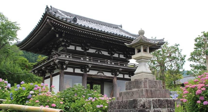 京都府のあじさい寺