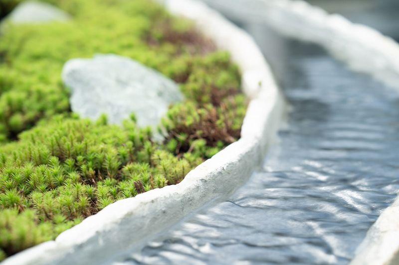 樹木葬「緑波」