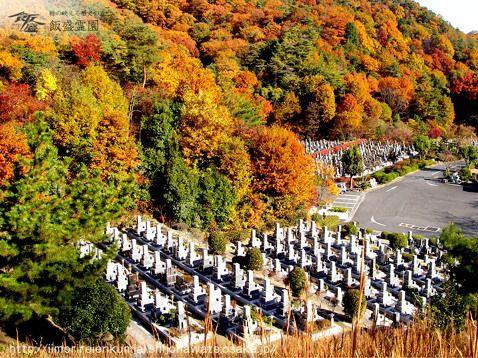 飯盛霊園 紅葉に包まれた園内