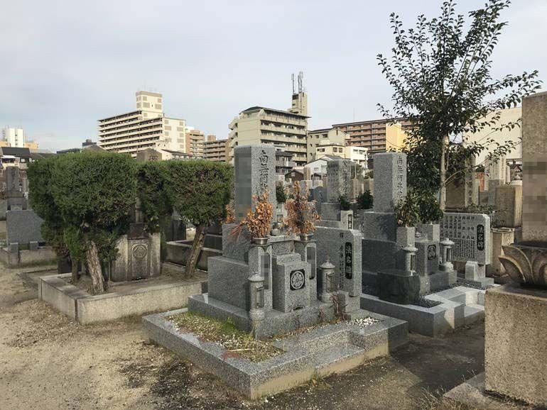 大阪市設 北霊園 平坦な参道