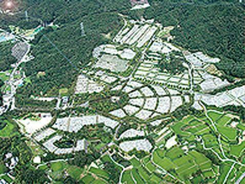飯盛霊園 園内航空写真