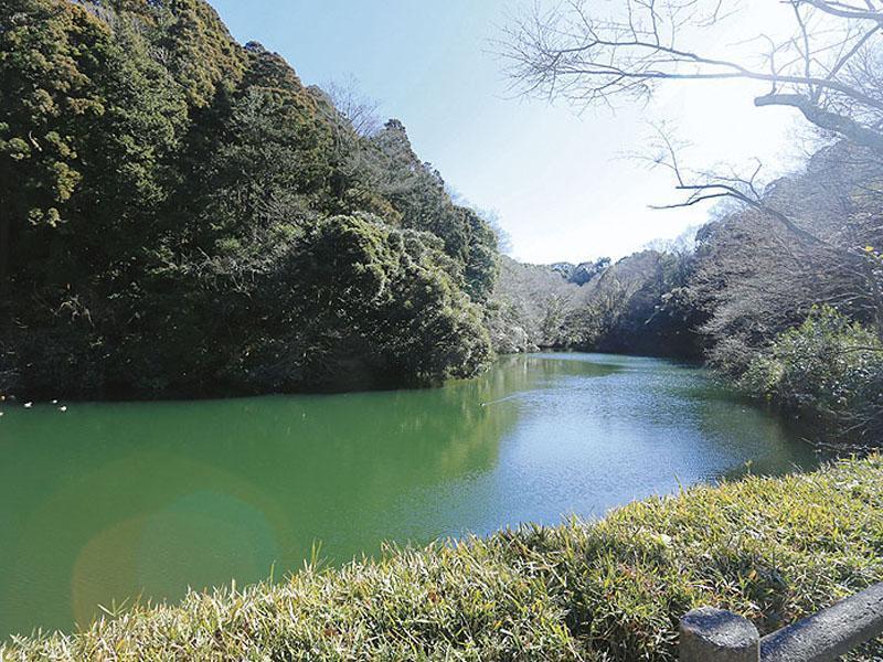鎌倉湖墓苑二期 園内から見える景色