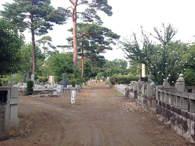 都立 多磨霊園 東京ドーム27個分で東京都最大の都立霊園