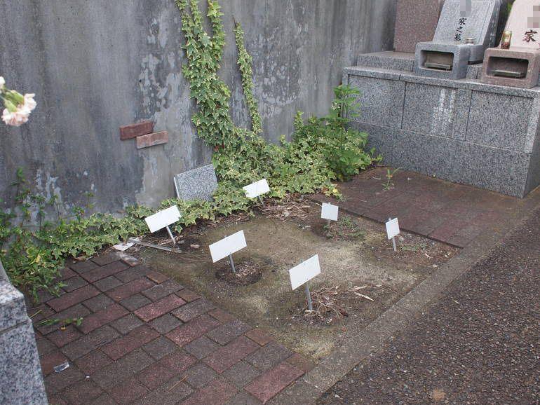藤沢霊園 新規募集区画