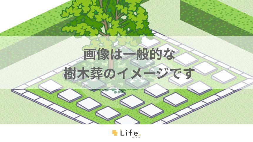 溝の口樹木葬墓地 墓域イメージ図