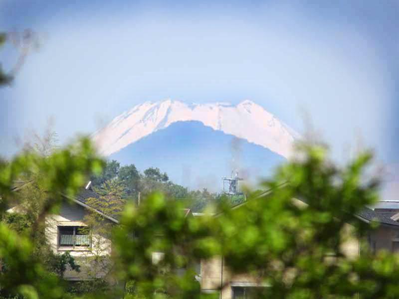 八王子みなみ野樹木葬墓地 天気が良い日に墓域から見える富士山