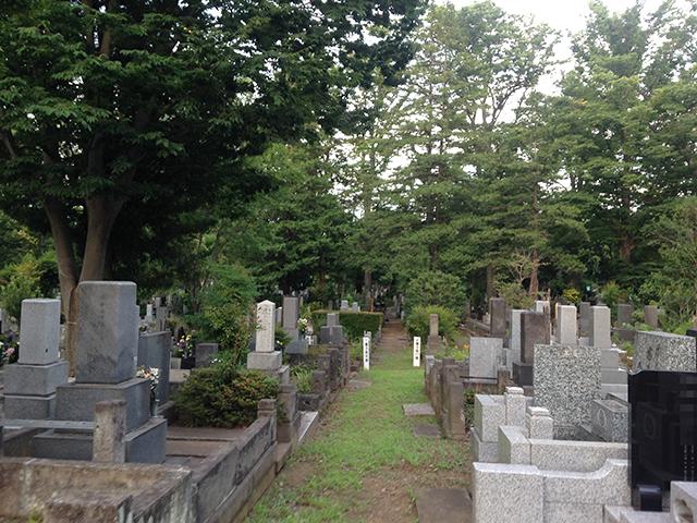 都立 雑司ヶ谷霊園 緑に囲まれた墓域