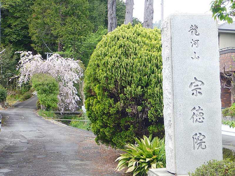 清水興津樹木葬墓地