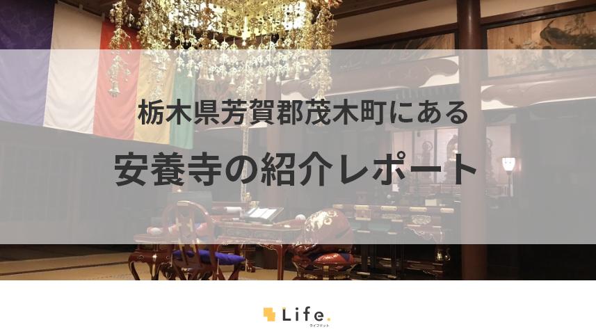 安養寺の紹介記事タイトル